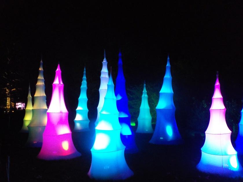 Kew Christmas lights